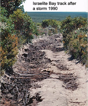 Storm damage 1990 Israelite Bay